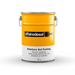 Affairedesol Peinture Sol Parking Béton ou Goudron Résistante Polyvalente pour Extérieur, 5L Gris de la marque Affairedesol image 0 produit