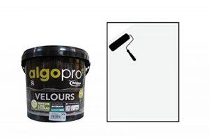 ALGO : Peinture écologique naturelle bio-sourcée à base d'huile végétale et d'algues idéale pour les murs : Algo Pro velours 3L - Teinte : BLANC DE BLANC (Blanc) de la marque ALGO image 0 produit