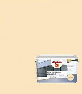ALPINA Peinture façade - Acrylique - Garantie 5 ans - Mat Ton Pierre 2,5L 23m² de la marque Alpina image 0 produit