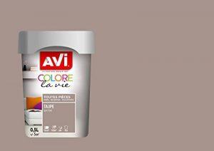AVI - COLORE TOUTES PIECES - Haut Pouvoir Opacifiant - Satin - 0,5L - Taupe de la marque Avi image 0 produit