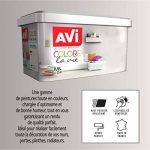 AVI - COLORE TOUTES PIECES - Haut Pouvoir Opacifiant - Satin - 2,5L - Gris Graphite de la marque Avi image 1 produit