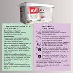 AVI - COLORE TOUTES PIECES - Haut Pouvoir Opacifiant - Satin - 2,5L - Gris Graphite de la marque Avi image 2 produit