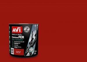 AVI - PERFORM ACTIV FER - Peinture Anti Corrosion - Brillant - Rouge Vif Brillant de la marque Avi image 0 produit