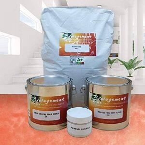 Biologement Béton Ciré Ecologique sans Odeur Sol Carrelage Murs - Grenade - 16 m² [Classe énergétique A+++] de la marque Biologement image 0 produit