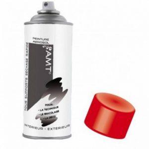Bombe De Peinture Aérosol Rouge Mat de la marque AMT image 0 produit