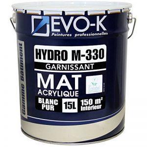 EVO-K Peinture professionnelle Murs & Plafonds HYDRO M330 Acrylique Blanc Mat 15L - 150m² de la marque EVO-K image 0 produit