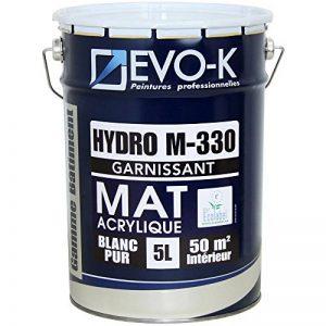 EVO-K Peinture professionnelle Murs & Plafonds HYDRO M330 Acrylique Blanc Mat 5L - 50m² de la marque EVO-K image 0 produit