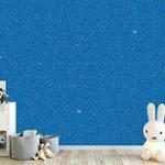 Hemway - Additif à paillettes - pour peinture émulsion ou à l'eau - 110 g de la marque Hemway image 4 produit