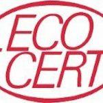 Huile de Ricin ECOCERT 100% BIO – Croissance et Résistance des cheveux – Certifiée par Référentiel Cosmos GreenLife – Qualité Unique – 100ml de la marque Maroc-Argan image 4 produit