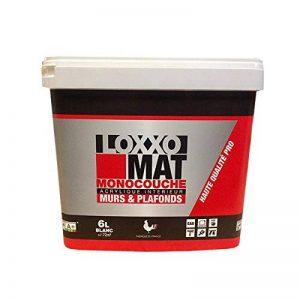 LOXXO Peinture Mat Monocouche Blanc de la marque Loxxo image 0 produit
