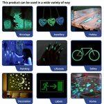 lumentics Premium Poudre phosphorescente - Pigments luminescents Ultra forts, Poudre de Couleur autoluminescente, Poudre Fluorescente, Pigment de Couleur (40 g, Verde-Azul) de la marque lumentics image 4 produit