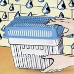 moisissure mur extérieur TOP 2 image 1 produit