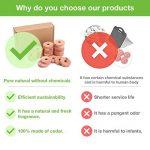 moisissure traitement TOP 14 image 1 produit