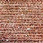 murando Papier peint intissé 350x256 cm Décoration Murale XXL Poster Tableaux Muraux Tapisserie Photo Trompe l'oeil brique texture f-B-0030-a-c de la marque Papier-peint image 3 produit
