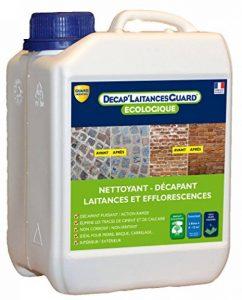 Nettoyant laitances de ciment et efflorescences Guard Industrie DECAP'LAITANCES GUARD 2L de la marque Guard-Industrie image 0 produit