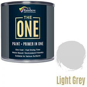 One Peinture multi surface pour bois, métal, plastique, intérieur, extérieur, gris clair, satiné, 250ml de la marque THE ONE image 0 produit