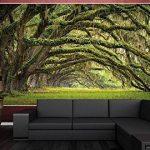 Papier peint de la Nature décoration de peinture murale paysage de forêt en été moss Chêne mystique avenue de Chêne Quercus enchantée Branches de parc | mur deco chez GREAT ART (210x140 cm) de la marque N/D image 2 produit