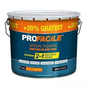 Peinture 2en1 façade direct sans sous couche, mat, extérieur, imperméabilisante, respirante, 12L Blanc de la marque PROFACILE image 0 produit
