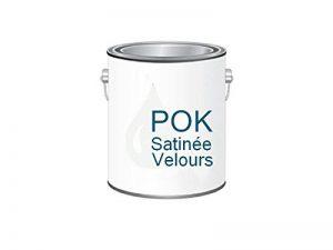 Peinture Acrylique pour murs Satin Lessivable - Blanc Oxydé - POK SATIN - 2,5 L - 10m²/L de la marque Pok image 0 produit