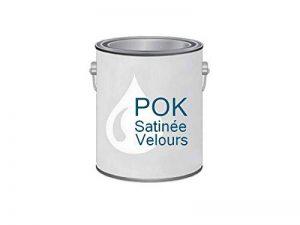 Peinture Acrylique pour murs Satin Lessivable - Blanc - POK SATIN - 5 L + BAC OFFERT de la marque Pok image 0 produit