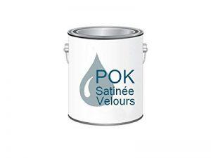 Peinture Acrylique pour murs Satin Lessivable - Bleu Gris - POK SATIN - 5 L + BAC OFFERT de la marque Pok image 0 produit