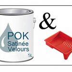 Peinture Acrylique pour murs Satin Lessivable - Bleu Gris - POK SATIN - 5 L + BAC OFFERT de la marque Pok image 1 produit