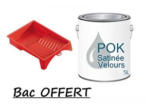 Peinture Acrylique pour murs Satin Lessivable - Gris Perle - POK SATIN - 5 L + BAC OFFERT de la marque Pok image 0 produit