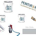 Peinture Acrylique pour murs Satin Lessivable - Gris Perle - POK SATIN - 5 L + BAC OFFERT de la marque Pok image 2 produit
