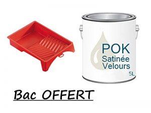 Peinture Acrylique pour murs Satin Lessivable - Lin Clair - POK SATIN - 5 L + BAC OFFERT de la marque Pok image 0 produit