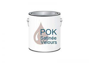 Peinture Acrylique pour murs Satin Lessivable - Rose Poudré - POK SATIN - 5 L + BAC OFFERT de la marque Pok image 0 produit