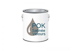 Peinture Acrylique pour murs Satin Lessivable - Taupe Chocolatée - POK SATIN - 2,5 L - 10m²/L de la marque Pok image 0 produit