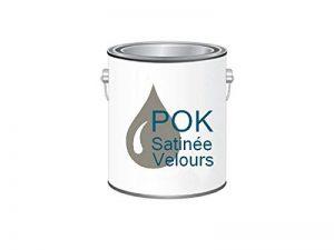 Peinture Acrylique pour murs Satin Lessivable - Taupe Grisée - POK SATIN - 5 L + BAC OFFERT de la marque Pok image 0 produit