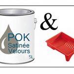 Peinture Acrylique pour murs Satin Lessivable - Taupe Grisée - POK SATIN - 5 L + BAC OFFERT de la marque Pok image 1 produit