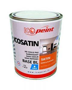 Peinture Acrylique Satin Lessivable 1L - ICOSATIN RAL 7016 Gris anthracite de la marque ICOPEINT image 0 produit
