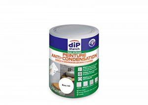 Peinture Anti-Condensation, Dip étanch - Blanc Satin, 0,75L de la marque DIP-ETANCH image 0 produit
