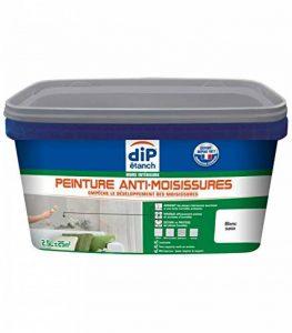 Peinture Anti-Condensation, Dip étanch - Blanc Satin, 2,5L de la marque DIP-ETANCH image 0 produit