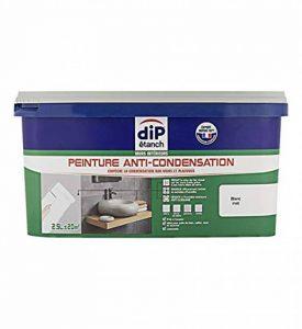 Peinture Anti-Moisissure, Dip étanch - Blanc Satin, 2,5L de la marque DIP-ETANCH image 0 produit