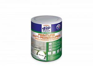 Peinture Anti-Moisissures, Dip étanch - Blanc Satin, 0,75L de la marque DIP-ETANCH image 0 produit