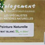 Peinture Blanche Mat Mur et Plafond monocouche - Peinture Blanc Naturelle écologique sans odeur 5L - 50m² - Biologement de la marque BIOLOGEMENT image 1 produit