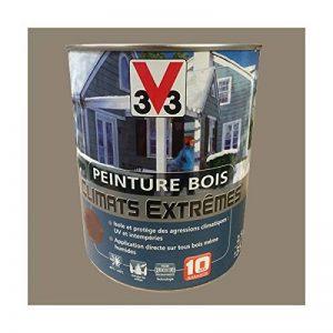 Peinture Bois V33 Climats Extrêmes Brillant Bois cendré de la marque V33 image 0 produit