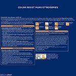 Peinture Color Resist Dulux Valentine - Lessivable et resistante pour Murs & Boiseries - aspect Mat Roc Blanc 1 L - Dulux Valentine de la marque DULUX-VALENTINE image 1 produit