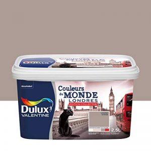 Peinture Dulux Valentine pour murs et boiseries - Couleurs Du Monde Edition Collector Londres Intense (Taupe) Satin 2,5L de la marque DULUX-VALENTINE image 0 produit