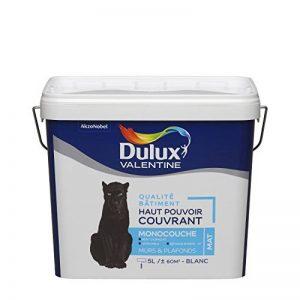 Peinture DULUX VALENTINE qualité bâtiment - haut pouvoir couvrant - monocouche blanc mat 5L de la marque DULUX-VALENTINE image 0 produit