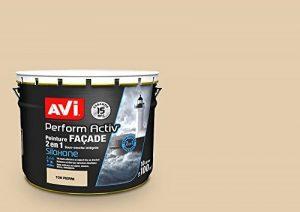 Peinture Façade, Avi Perform Activ - Ton Pierre Mat 10L de la marque Avi image 0 produit