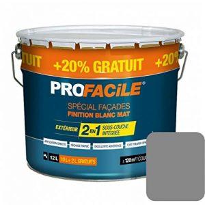 peinture facade gris TOP 7 image 0 produit
