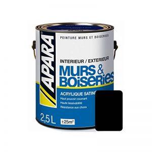 Peinture intérieure couleur, acrylique satinée 2.5 litres Noir de la marque Peintures Daniel image 0 produit