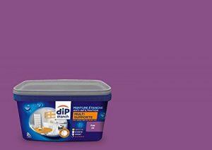 Peinture Multi-Supports, Dip étanch - Prune Satin, 2L de la marque DIP-ETANCH image 0 produit