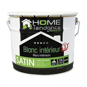 Peinture murale 10L blanc satin - lessivable - HOME TENDANCE by Renaulac de la marque HOME TENDANCE image 0 produit
