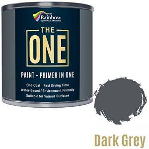 Peinture One Paint multi-surfaces pour bois, métal, plastique, intérieur, extérieur, gris foncé, satiné, 250 ml de la marque THE ONE image 0 produit
