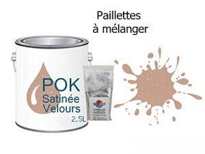 Peinture Pailletée Acrylique pour murs Satin Lessivable 2,5L - Beige Rosé - POK SATIN - 10m²/L de la marque Pok image 0 produit